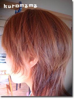 チチとママの気ままな節約日記-自分で髪カット